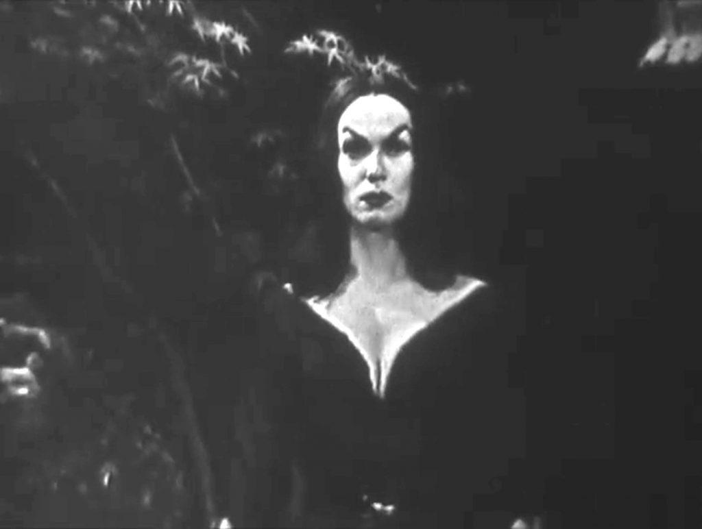 Professor Lugosi's sister, Vampria