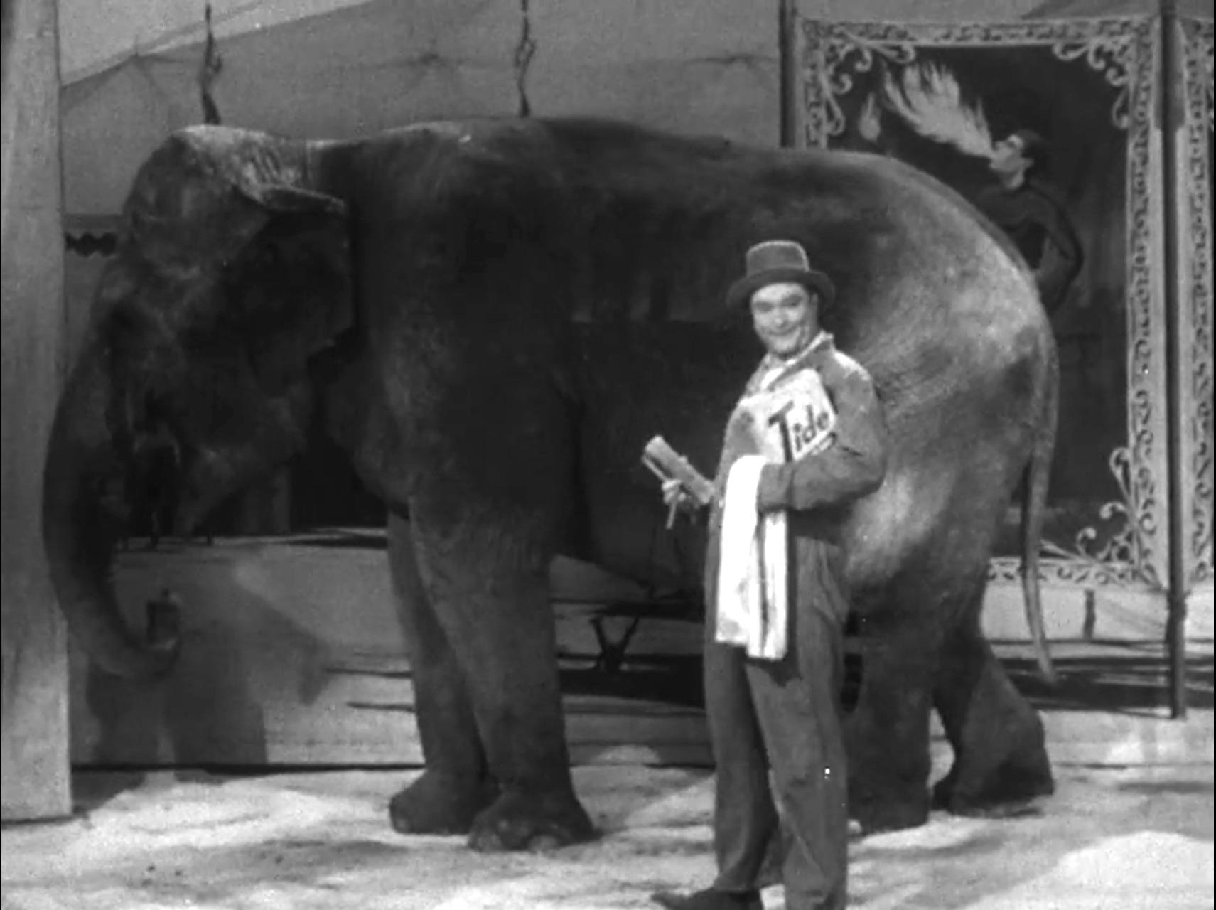 Willy Lump Lump washing the elephant